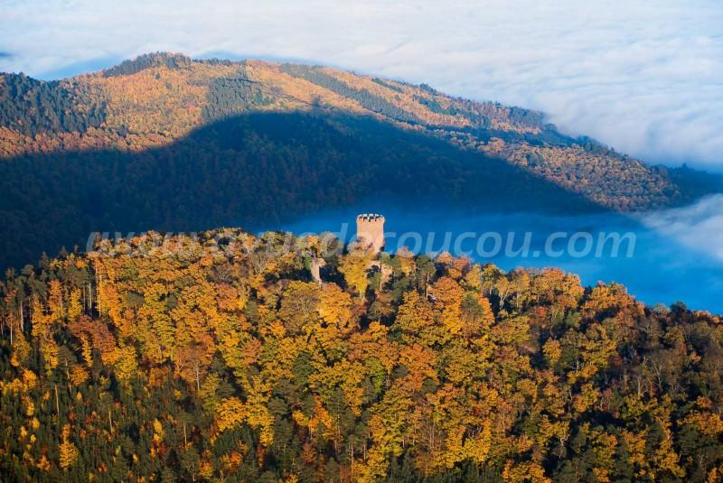 France, Haut-Rhin (68), Ribeauvillé, château du Haut-Ribeaupierre (vue aérienne)//France, Haut Rhin, Ribeauville, Haut Ribeaupierre castle (aerial view)