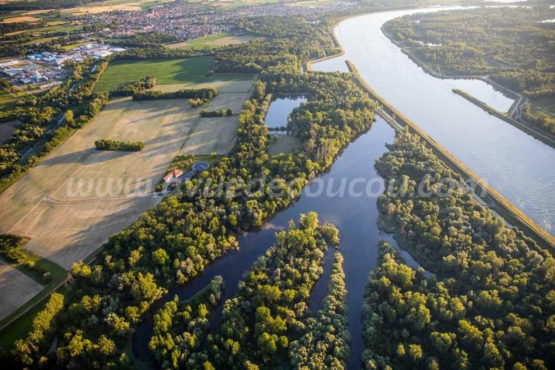 25-Reserve-naturelle-nationale-de-la-foret-dOffendorf