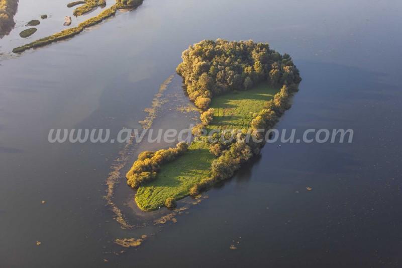 Réserve Naturelle de l'Île-du-Rohrschollen