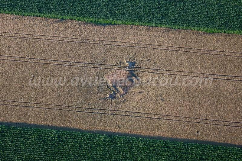 Anciennes fondations dans le blé vert