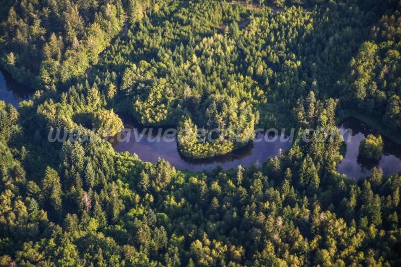 Plateau des Mille étangs