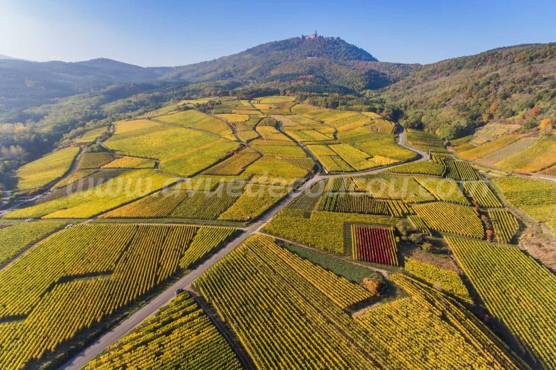Vignoble de Saint-Hippolyte et Haut-Koenigsbourg