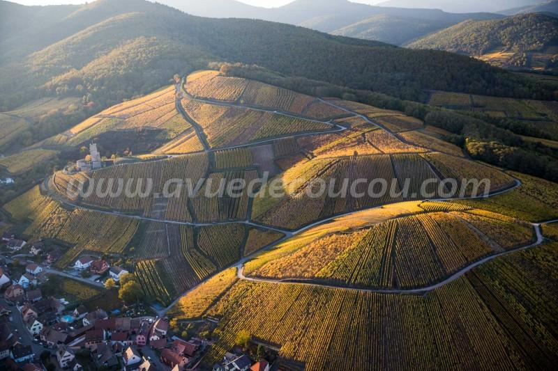 Vignoble de Katzenthal