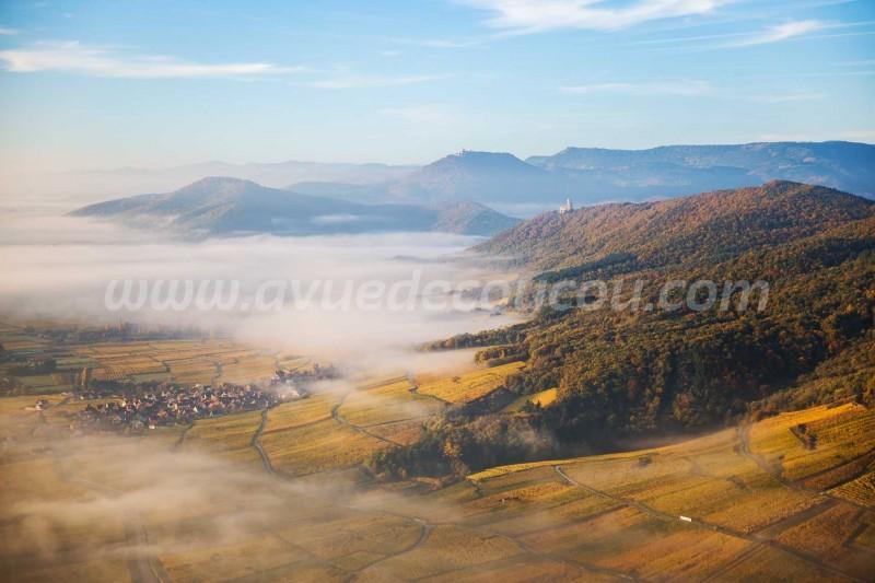 Route des Vins d'Alsace - Secteur Dieffenthal