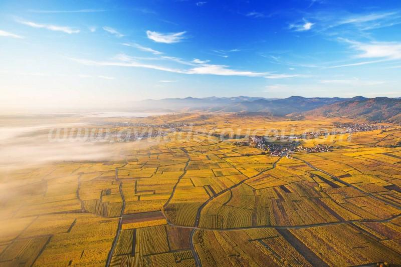 Route des Vins d'Alsace - Zellenberg